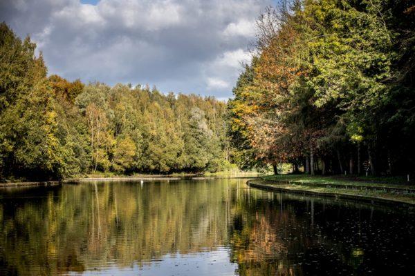 terra-nostra-etang-nature