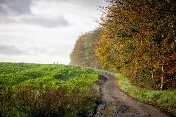 terra-nostra-promenades-waterloo