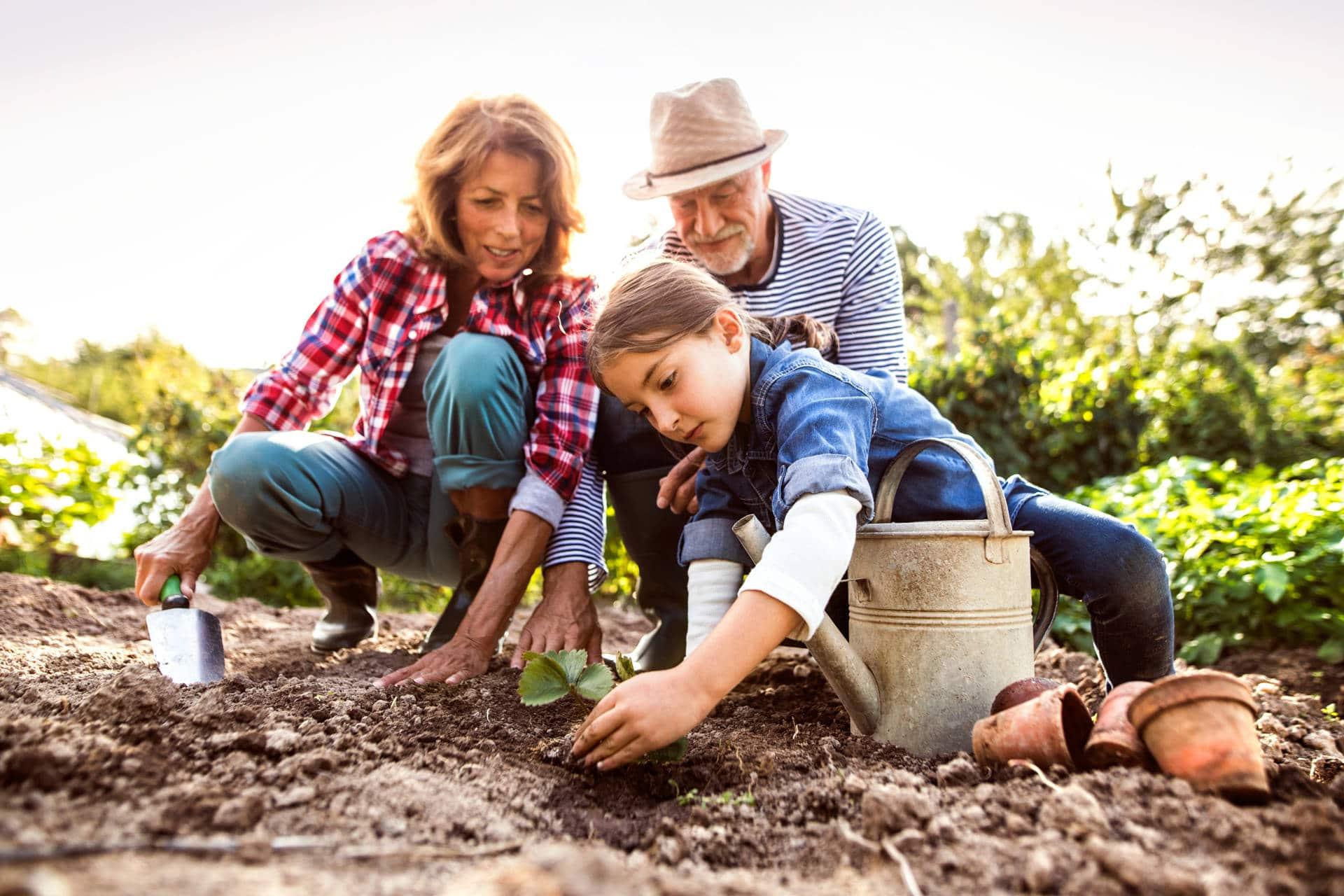 Journée de plantation participative 10.000 arbres plantés selon la méthode Miyawaki pour un nouvel espace de vie qui respire à Braine-l'Alleud.  Parce que vous aussi souhaitez un avenir tourné vers la nature et le bien-être. Parce que vous aussi pensez qu'il se construit ensemble.  Je participe !